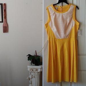 FINAL PRICE! NWT London Style yellow dress.Size 16